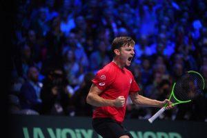 Goffin final Copa Davis