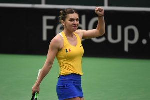 Simona Halep Fed Cup