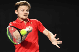 Goffin Bonzi ATP Montpellier
